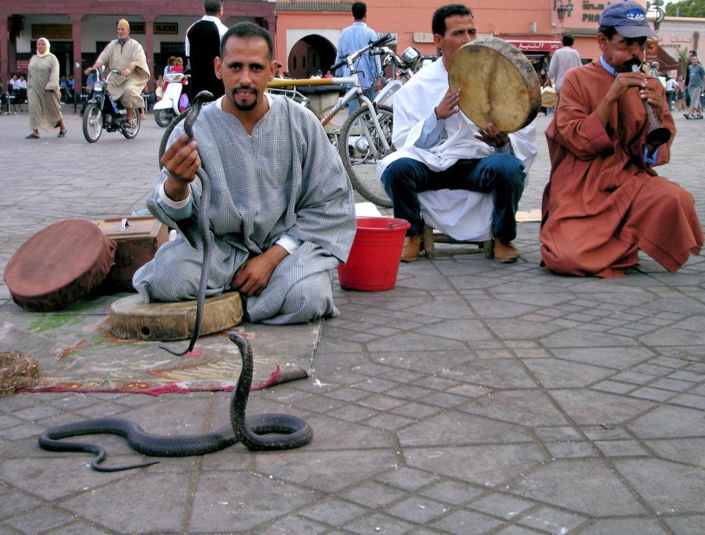 Snake Charmers in The Medina in Marraskesh, Morocco